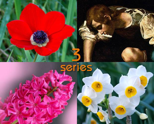 花になった神話 知っておきたいベスト3